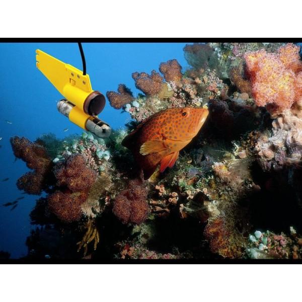 Waeco Onderwatercamera
